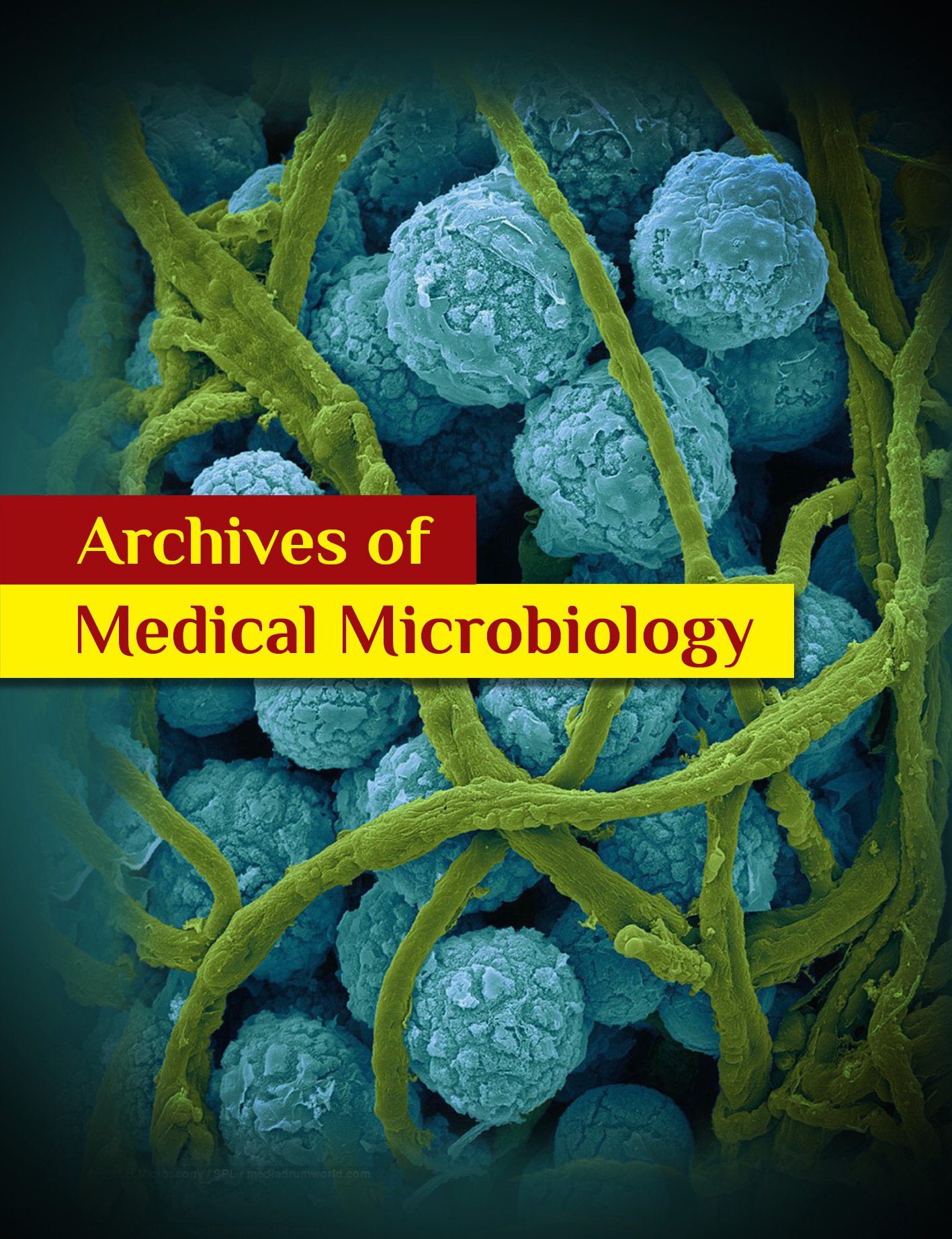 archives_of_medical_microbiology